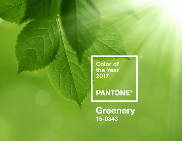 Pantone Colour for 2017 is…